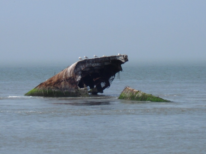 SS Atlantus, Cape May Point, NJ Copyright 2014 Shirley Sorbello