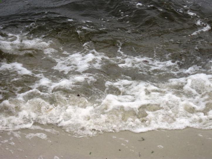 Ponce de Leon Beach, Punta Gorda, FL